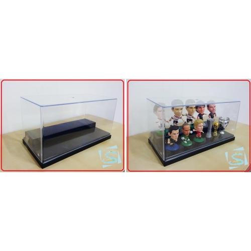 display case-500x500