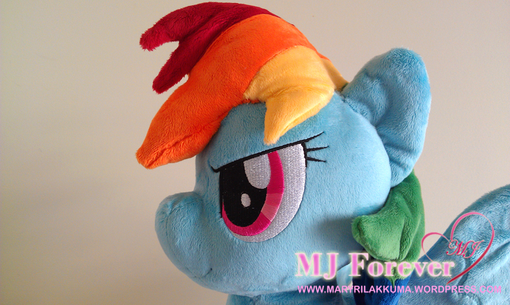 Rainbow Dash plushie by Burzurk